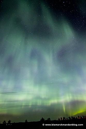 auroras__34820
