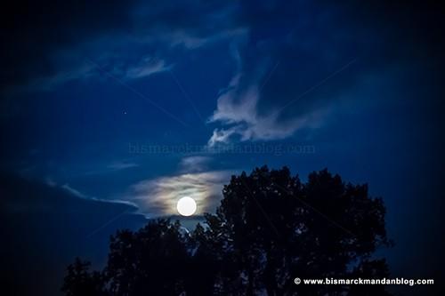 blue_moon_34541