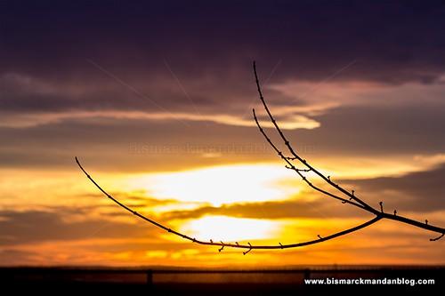 sunset_60d_1433