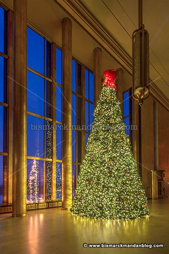 capitol_fake_tree_36123-5_hdr